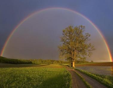 arcoiris-viviragradecidos
