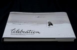 celebration 300x200