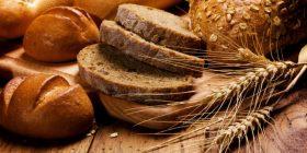 Gratuidad hecha pan