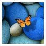aleteo_mariposa