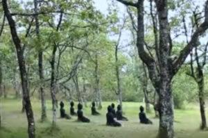 Conversaciones poco comunes – Cuarta parte: Mindfulness