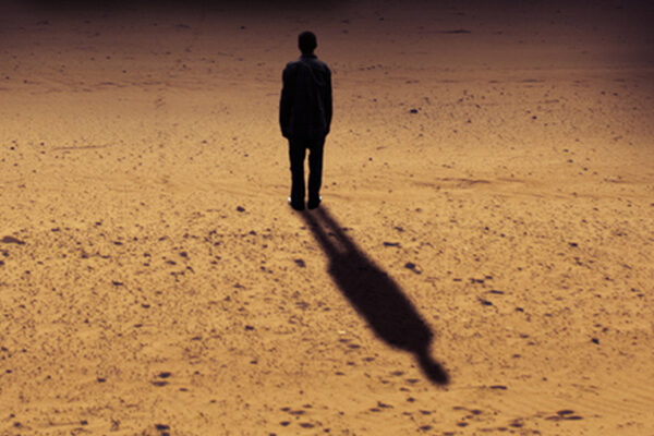 Integrar la sombra