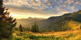 La naturaleza, nuestro viejo hogar