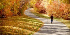 Meditar caminando