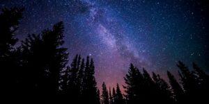 Una estrella, un deseo