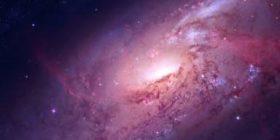 Ganadores Becas Columbia de Investigación en Ciencia y Espiritualidad