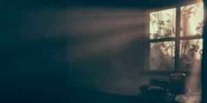 La sombra, un conducto hacia la luz