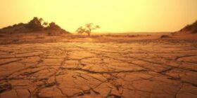 Susurros en el desierto