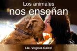 Los animales nos enseñan