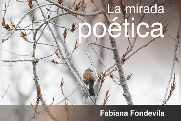 La mirada poética